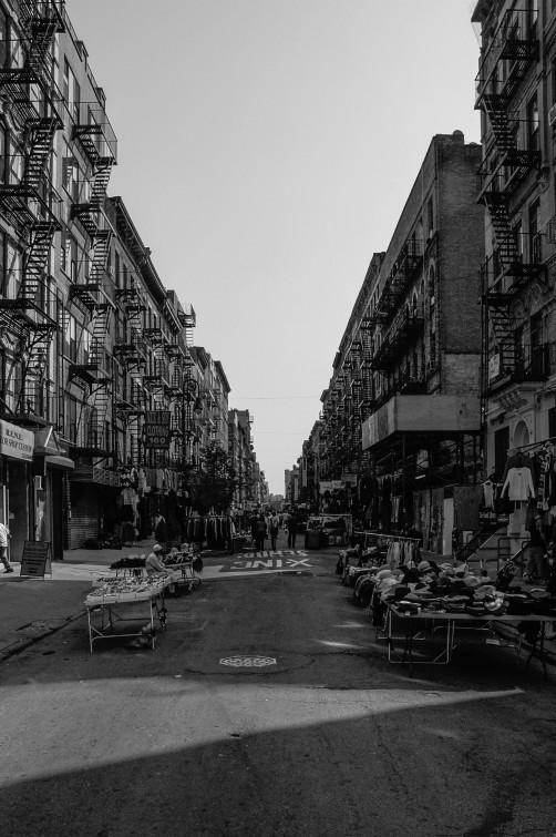 Wordpress NY TMP-1144