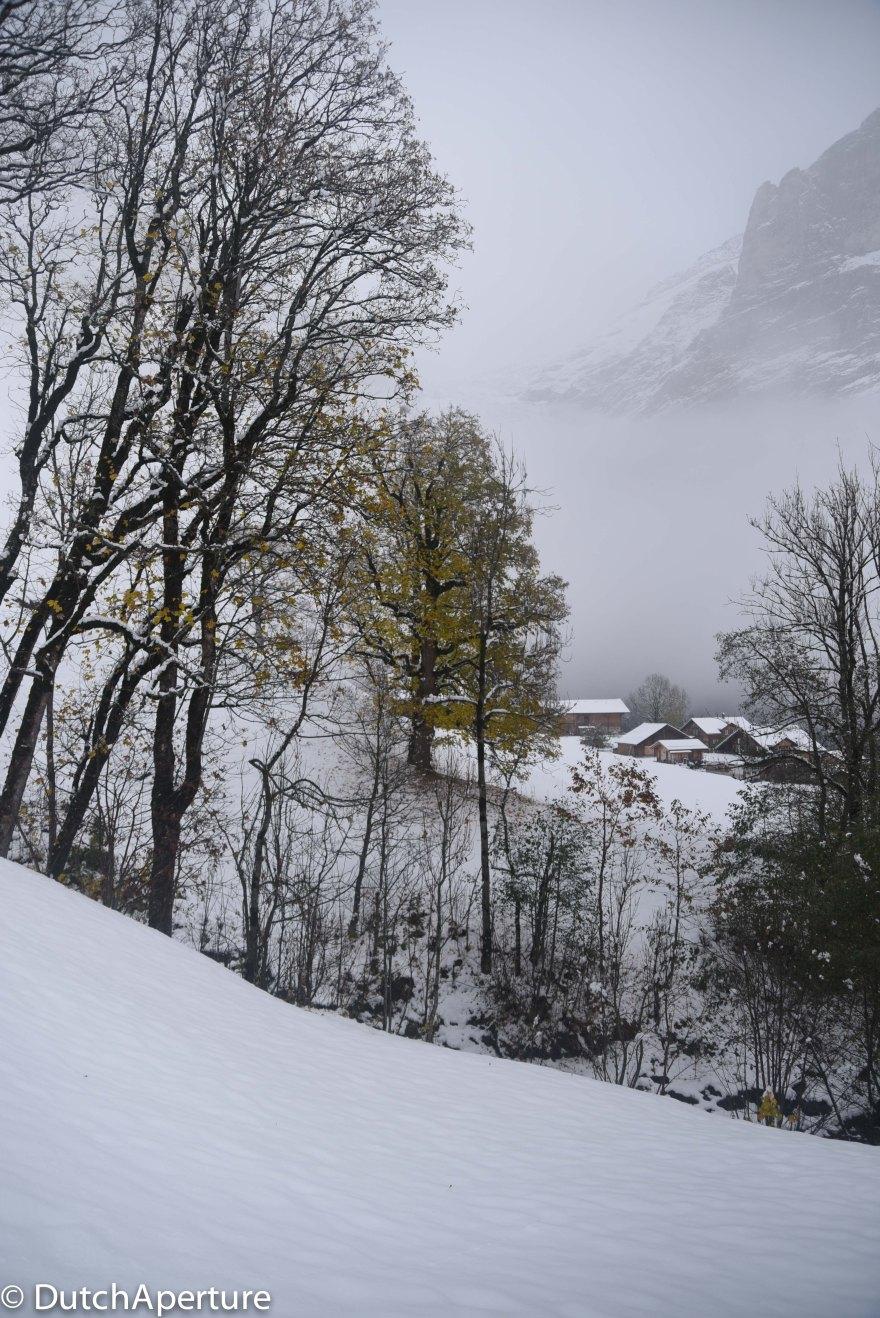 Grindelwald 2-11