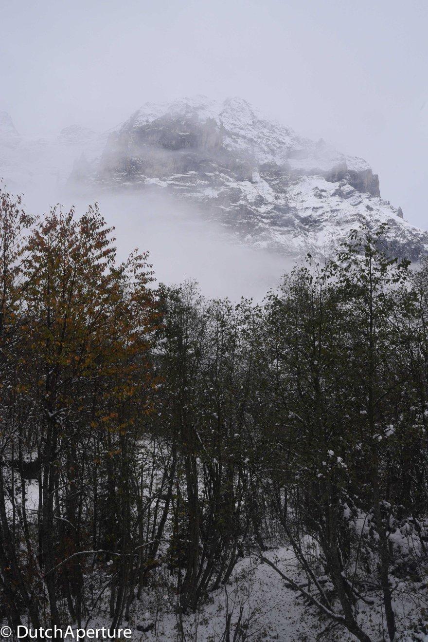 Grindelwald 2-15