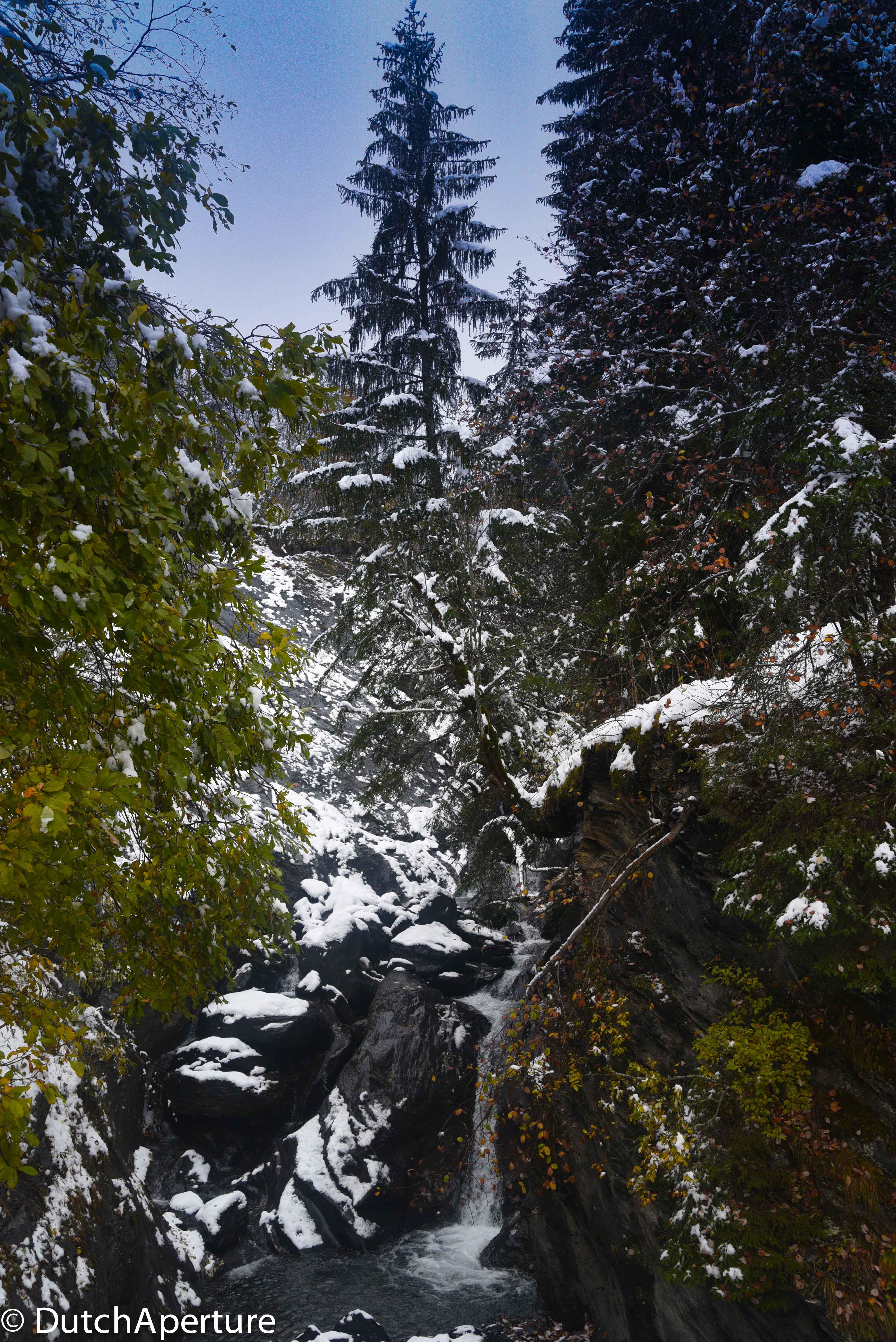 Grindelwald 2-16