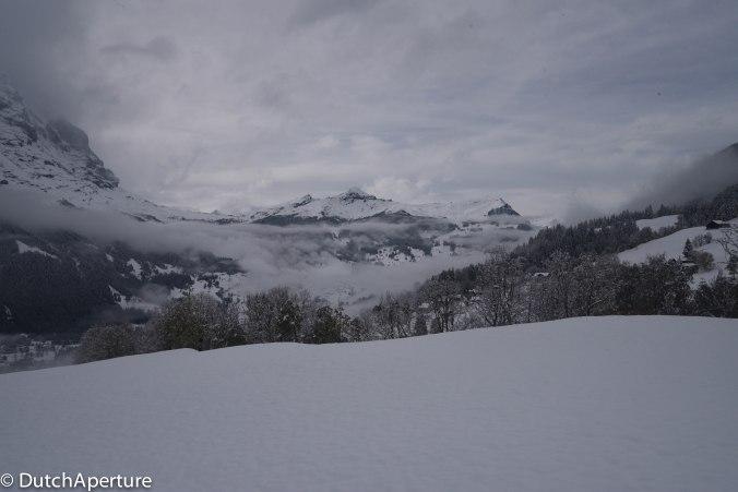 Grindelwald 2-8