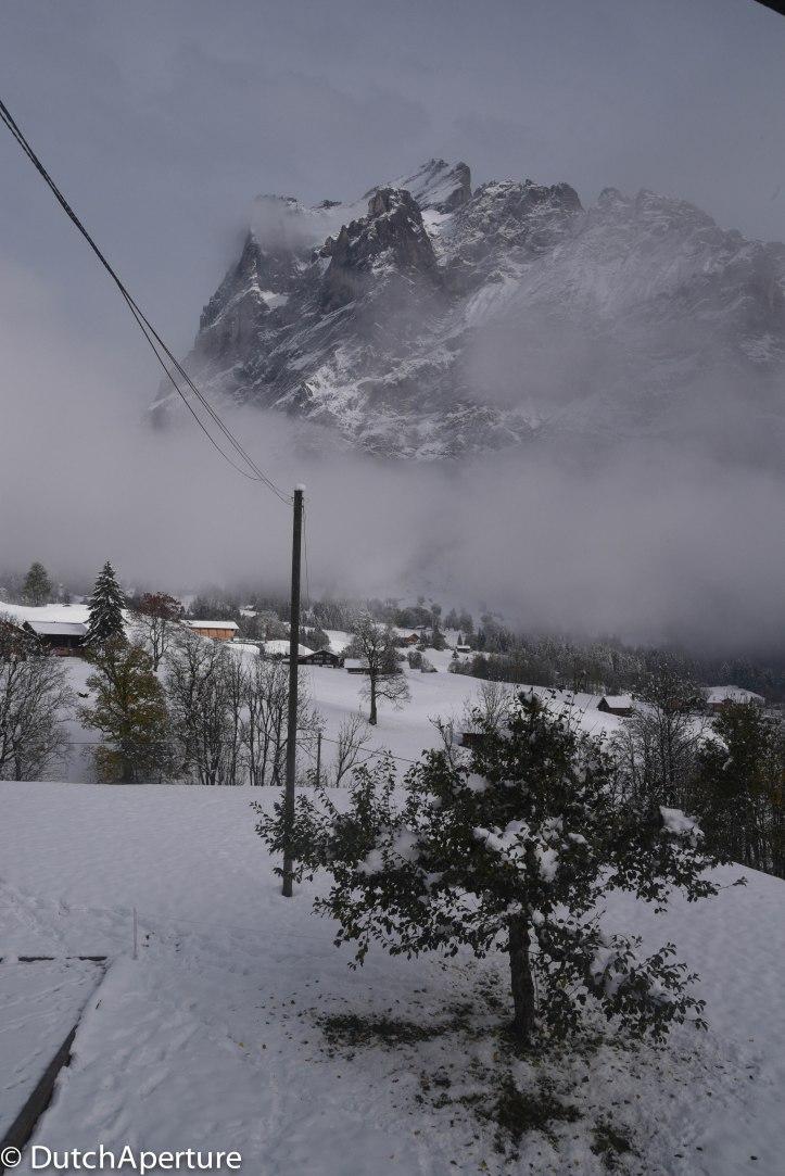 Grindelwald 2-9